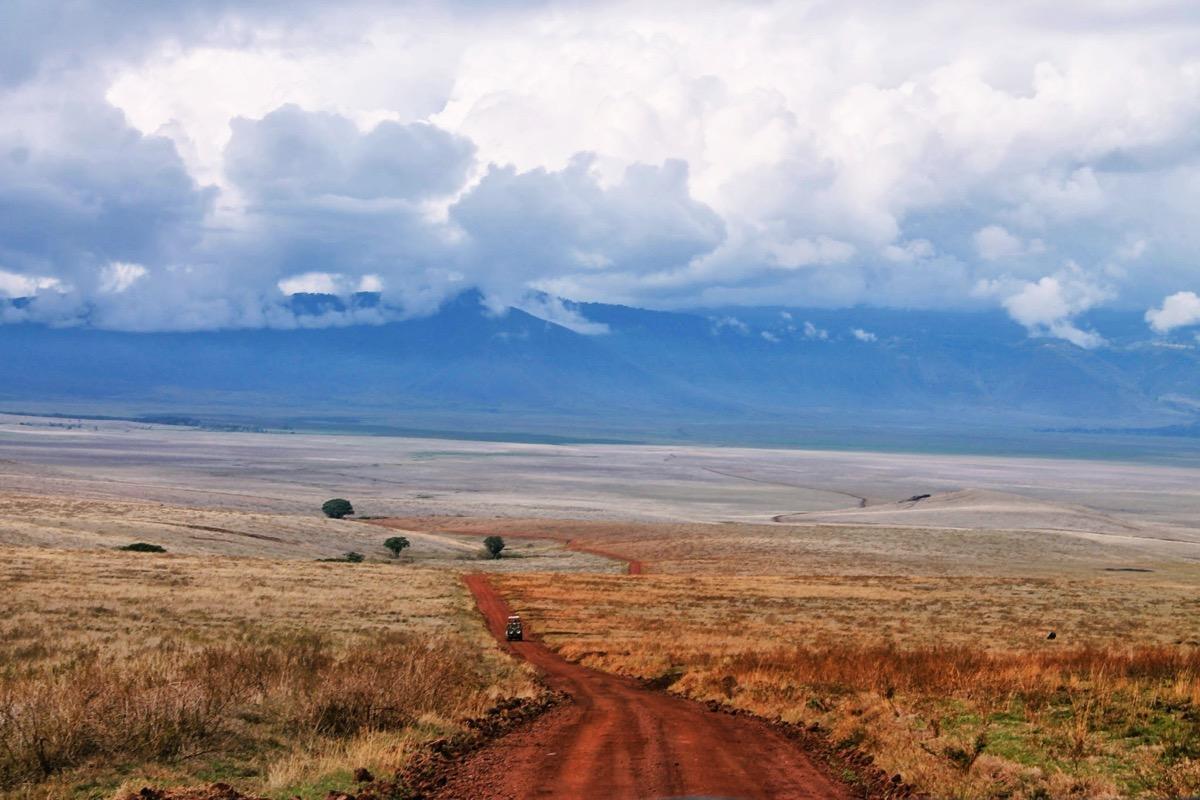 ンゴロンゴロ国立公園