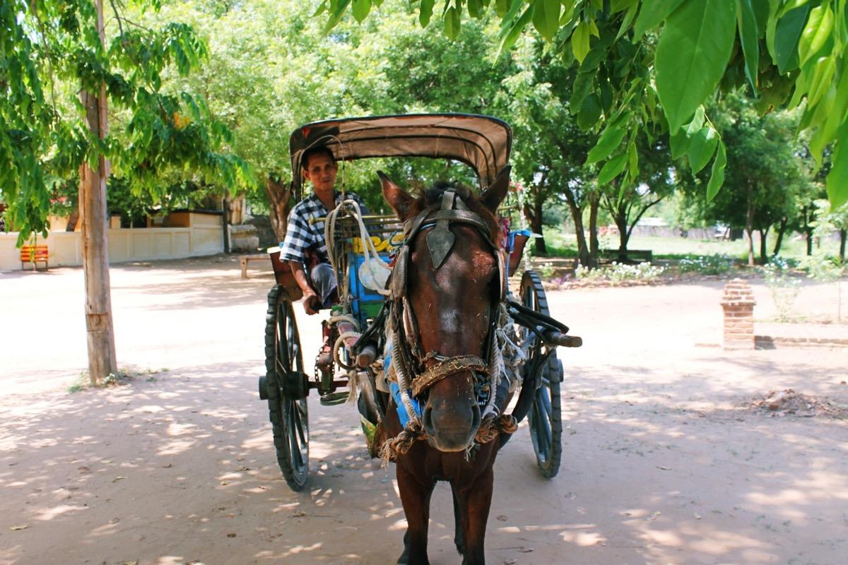 パガンの馬車